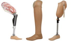 Prosthesis Styles